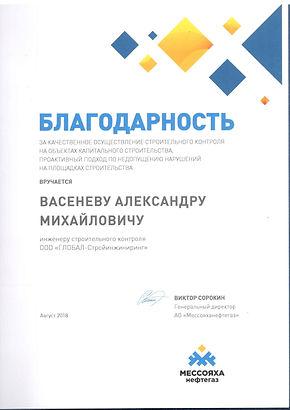Благодарность МНГ Васенев А.М..jpg
