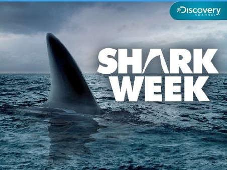 Ocean of Fear: Worst Shark Attack Ever
