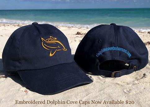 Dolphin Cove Caps.jpg