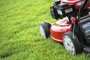 Lawn mowing and yard care