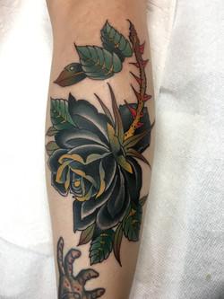 Black Rose Tattoo by Chris Astrologo