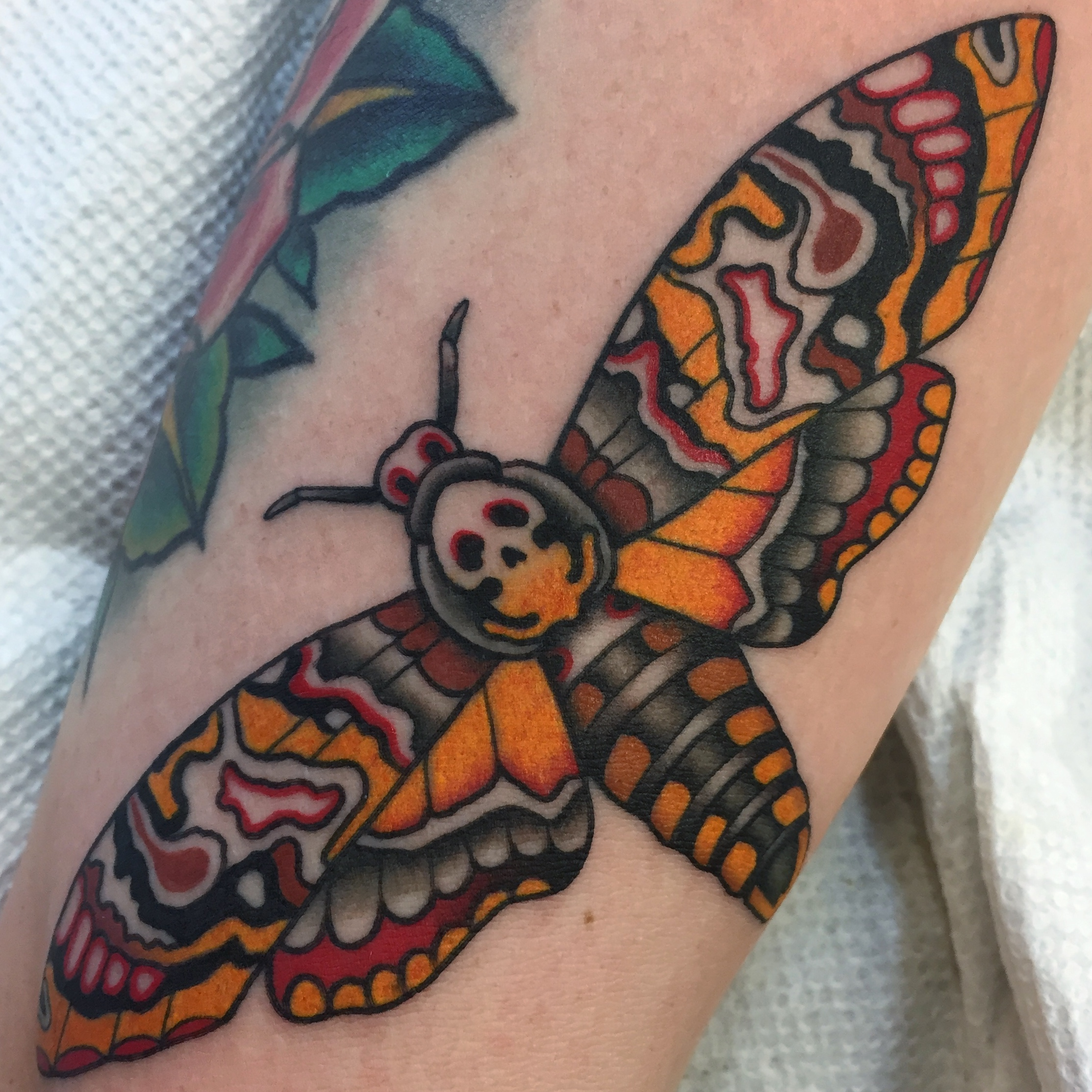 Deaths Head Moth Tattoo