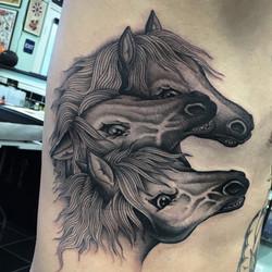 Pharaohs Horses Tattoo