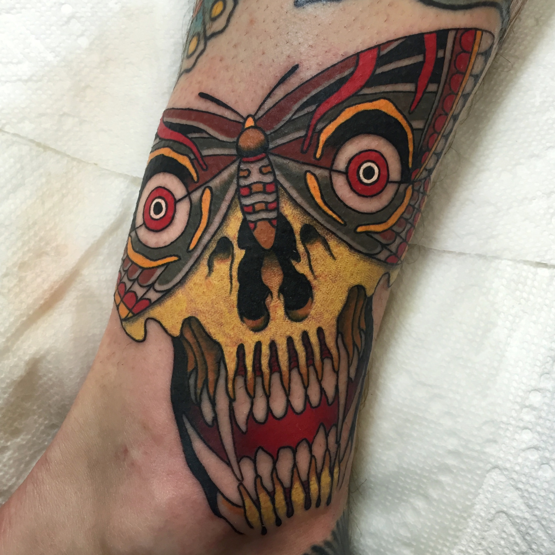 Moth Turning To Skull Tattoo