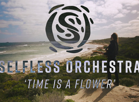 Selfless Orchestra's epic music video highlights where environmental destruction has been stopped
