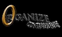 Organize Logo.png