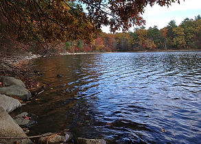 800px-Walden_Pond_shoreline_in_fall_(Mas