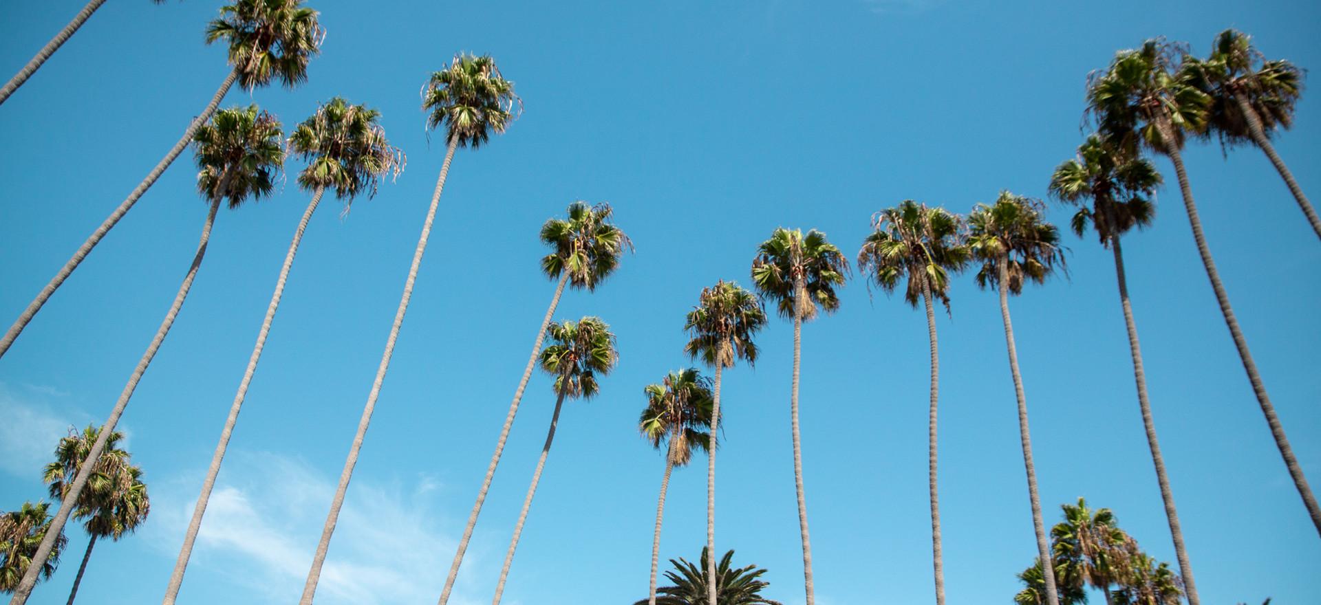 Califfornia, Santa Monica