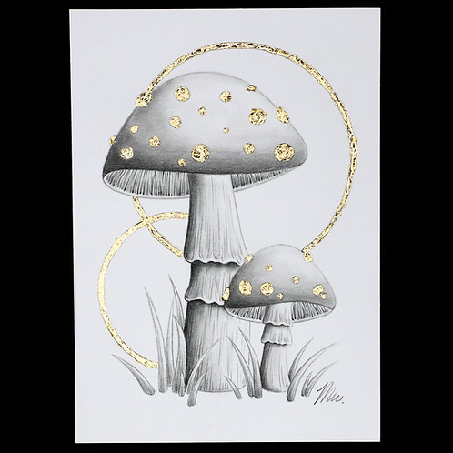 Advent Day 17 - Toadstools