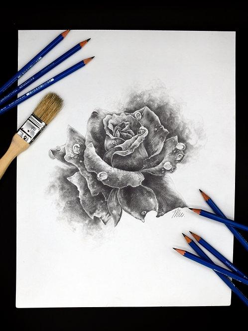 Graphite Rose