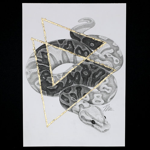 Advent Day 15 - Inverse Snake