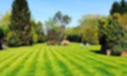 Weekly grass cut for our regular Garden