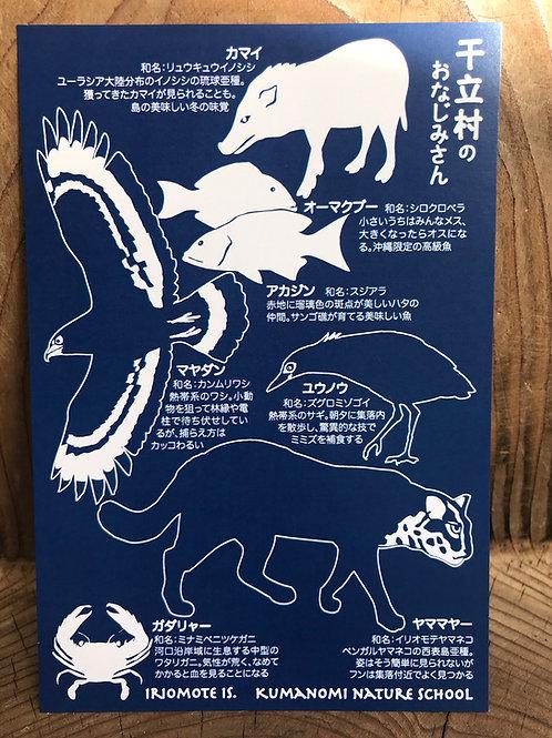 「西表島干立集落の生きもの」ポストカード(2枚組)