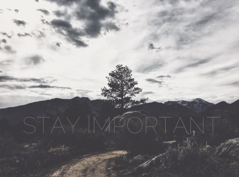 STAY IMPORTANT: Keep Living a Life that Matters