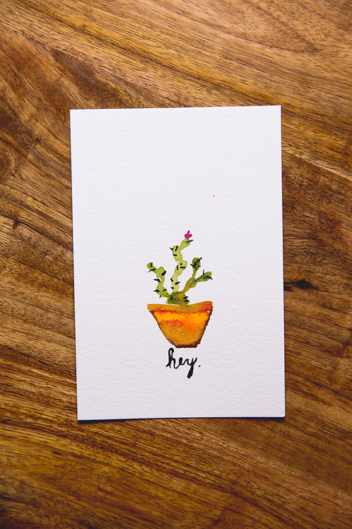 Cactus Postcard No. 5