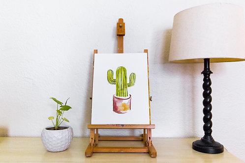 Cactus no.13