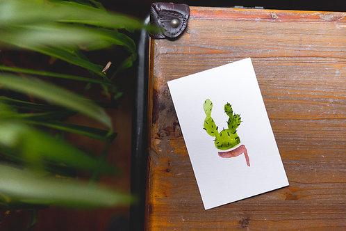 Cactus no. 15