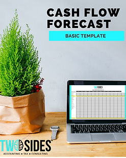 Cash Flow Forecst Basic Template