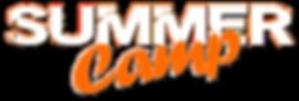 summer camp logo 2019.png