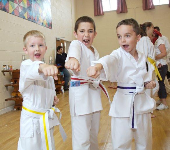 Tyger Taekwondo punch