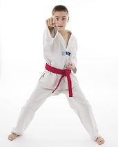 Rhys Taekwondo punch