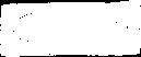 PI_logo_CMYK_white.png