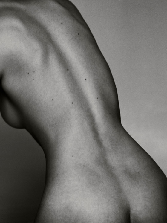 Naked Cacti : N
