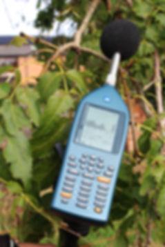 IMG_0911 edit 1.jpg