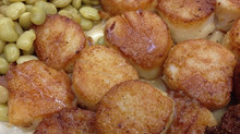 How to purchase, prepare and cook perfect scallops!