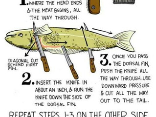 How-To Fillet a Fish