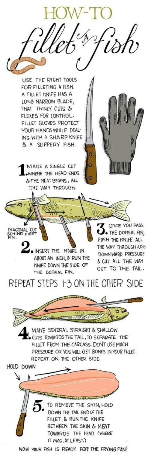 how to fillet a fish infographic