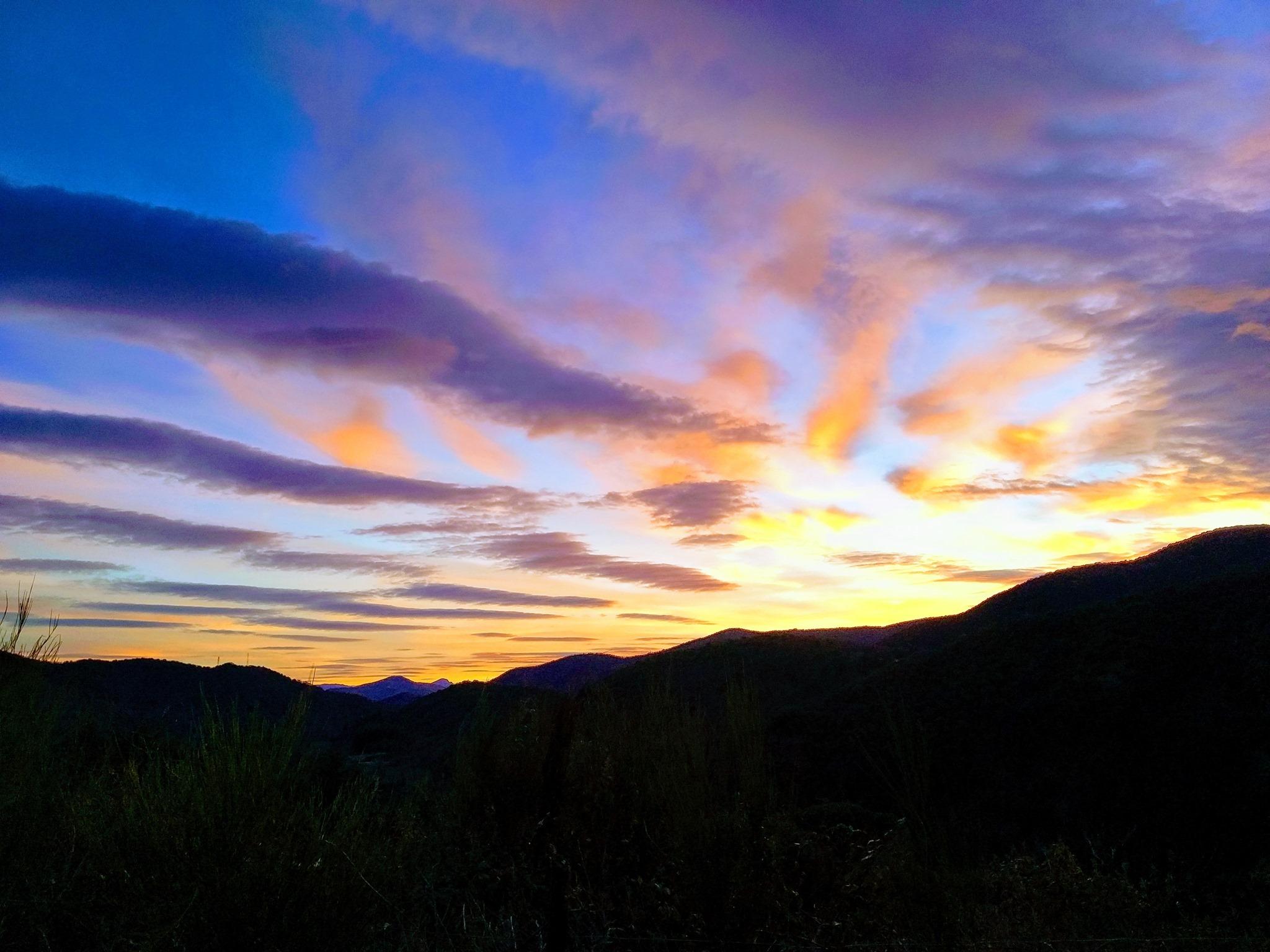 NaturoVida 30 - le ciel des Cévennes