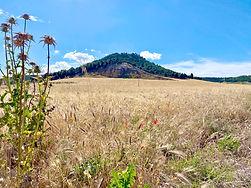 Pico de Uris.jpg