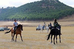 Romería_a_caballo.jpg
