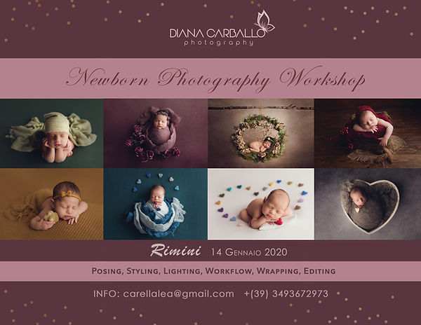 workshop diana carballo