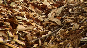 raw-woodchips_orig.png