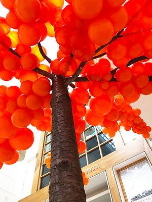 BalloonTree.jpg