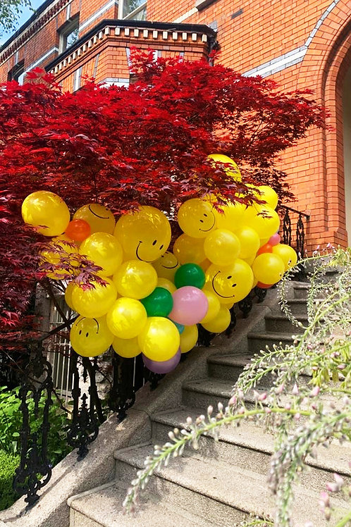 Balloon Garland - including delivery (sorry Dublin only)