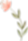 plants_0021_22.png