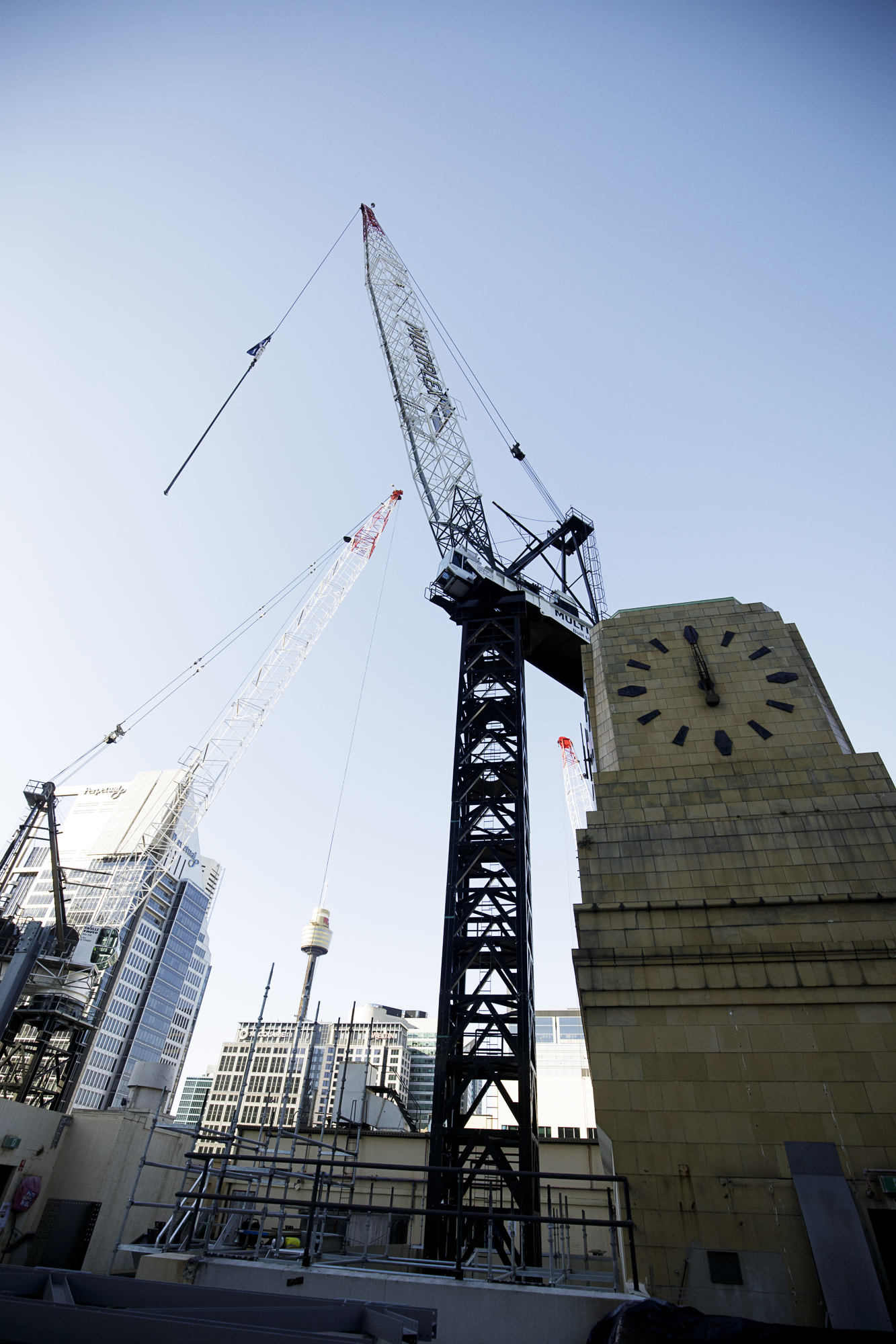 Tower - shell house tower crane operational