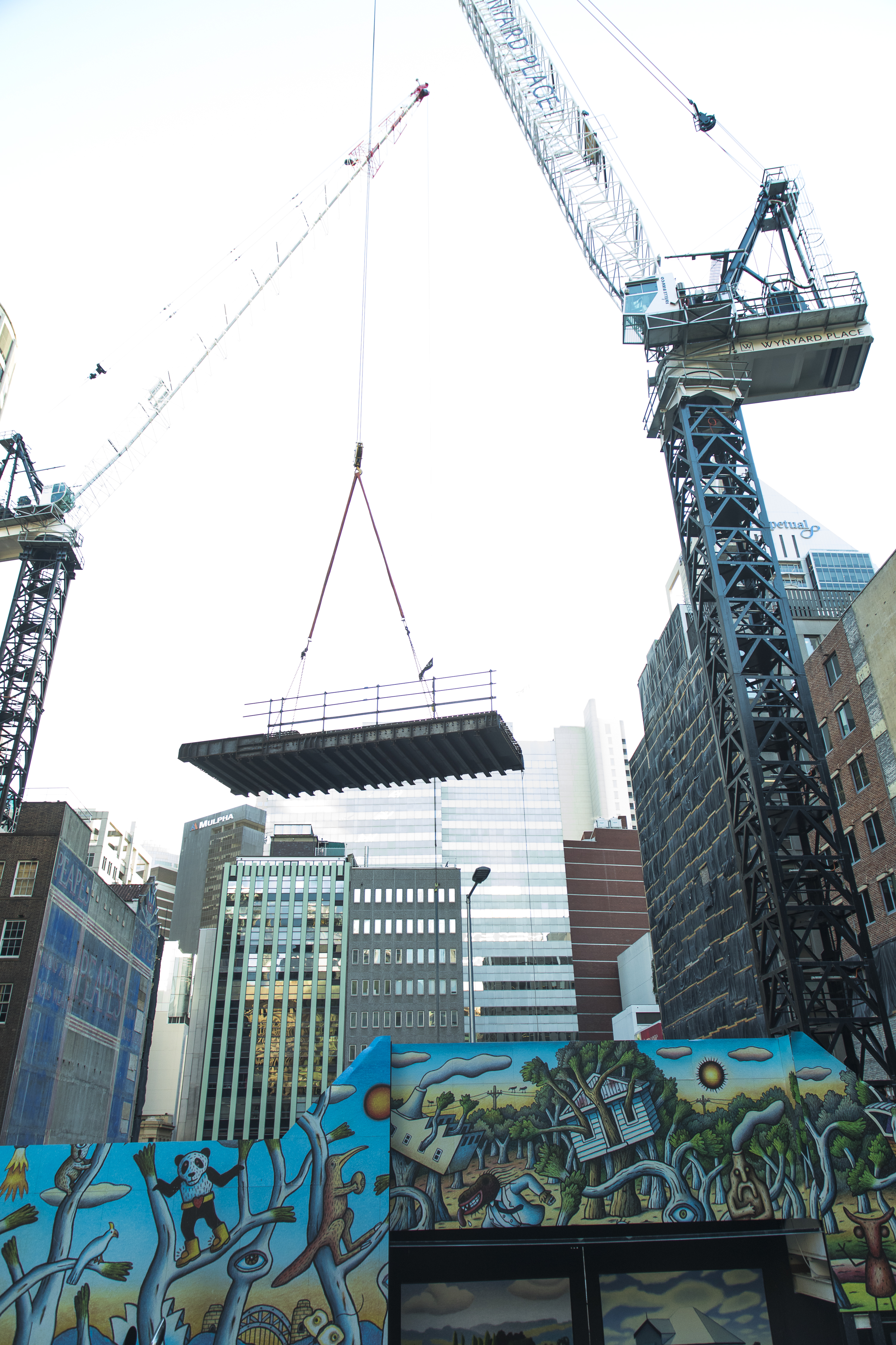 Tower Crane Operational
