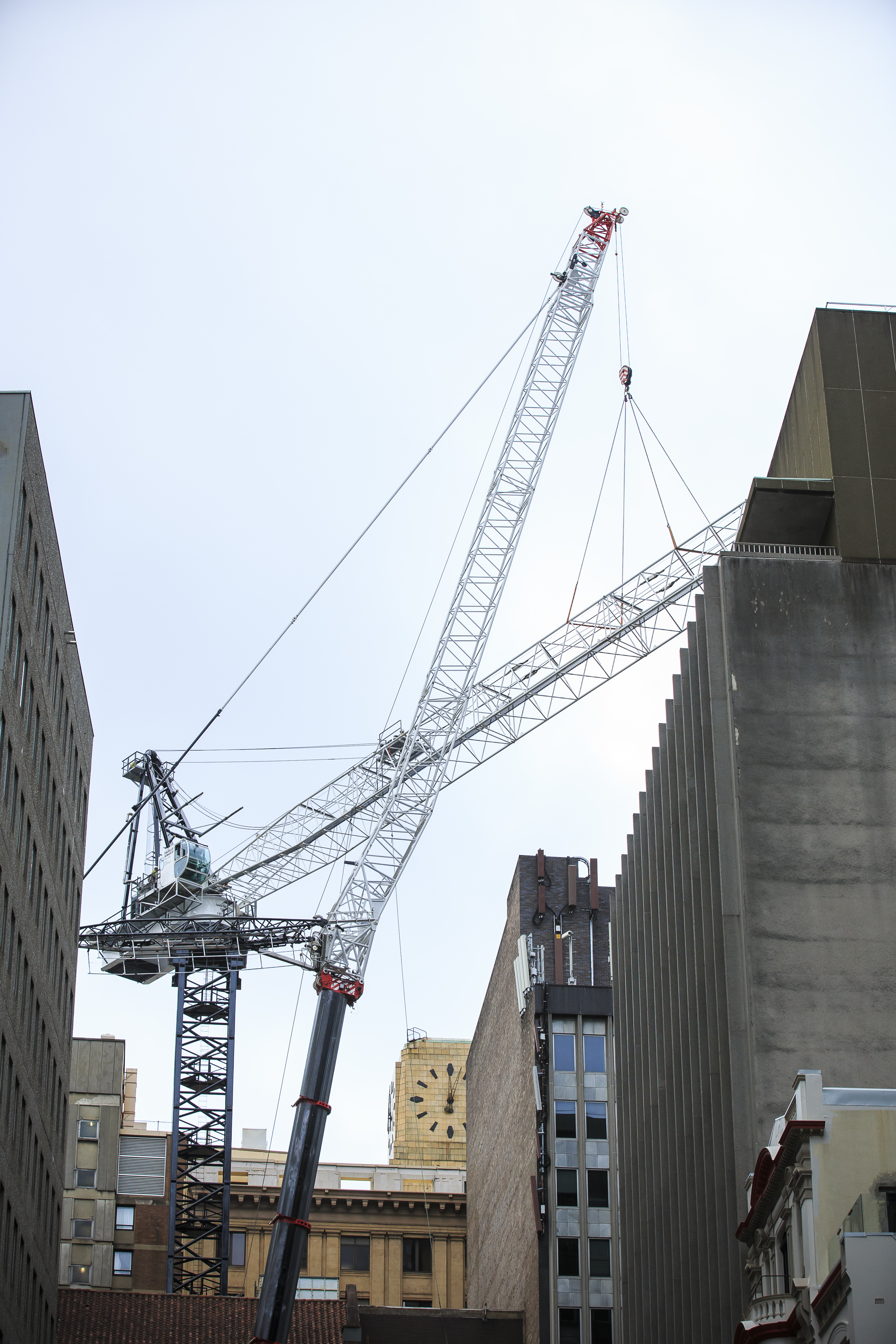 Establishment of Crane