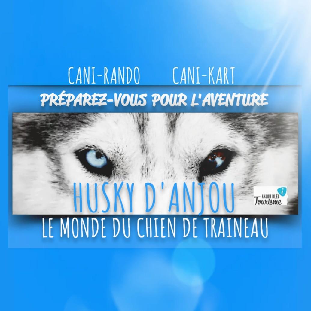 Husky d'Anjou 2018
