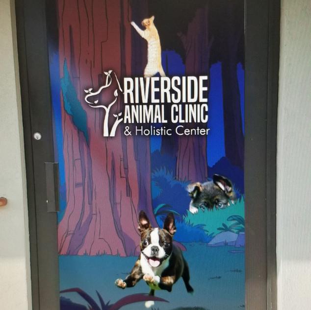 Animal Hospital window Graphics- Sticker Dude