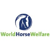 World Horse Welfare-01.png