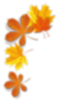 Autumn Leaves 2-01.png
