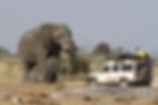 Botswana 3.png