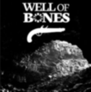 Well_of_Bones-cover-cropped.jpg