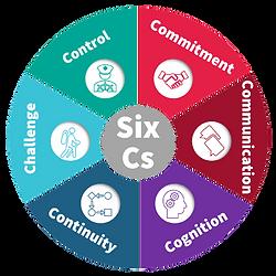 The Six Cs Model - ICFR