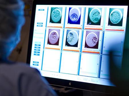 השפעה של החזרת עובר באיכות ירודה עם עובר באיכות טובה על סיכויי הצלחה ב-IVF